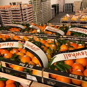 Naranja New Hall