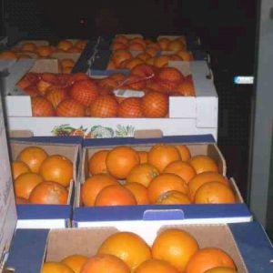 Arancione Tarocco