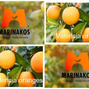 Arancione Valencia