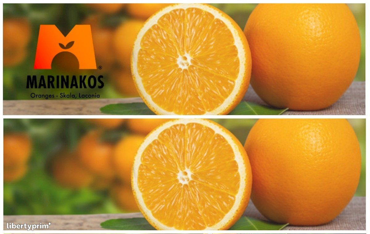 Orange Valencia Extra Greece Conventional Grower - info@marinakosoranges.com | Libertyprim
