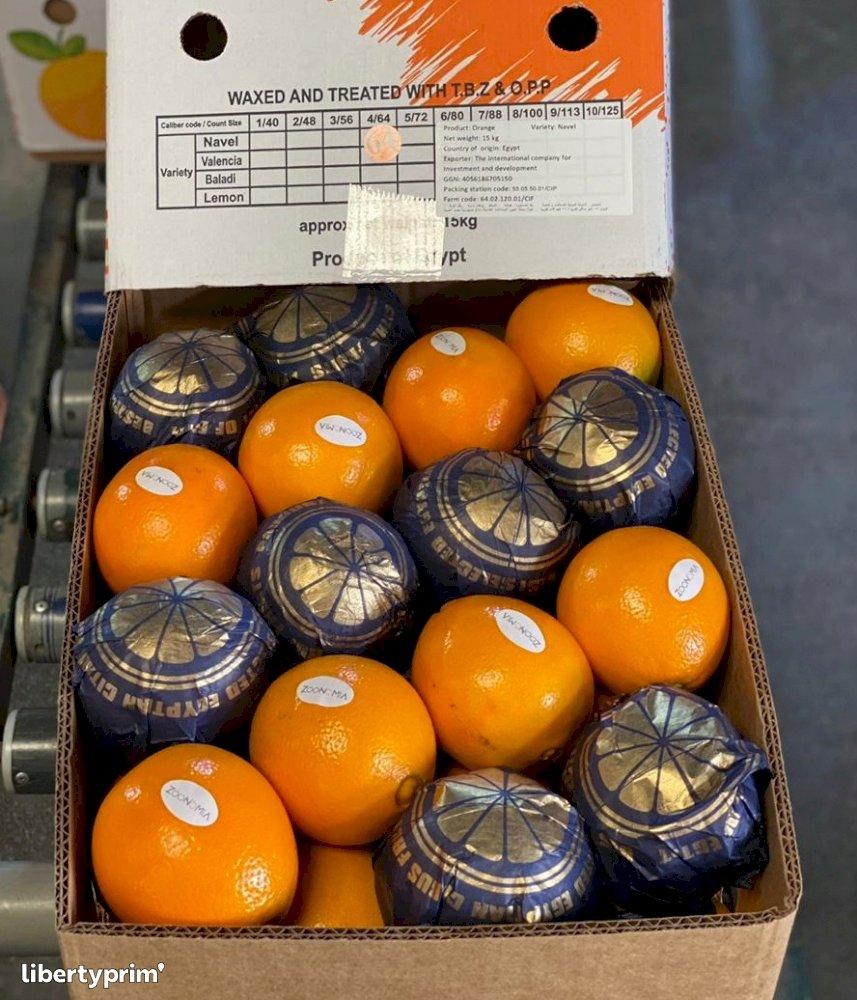 Naranja Valencia Categoría 1 Egipto Import - Export - na | Libertyprim