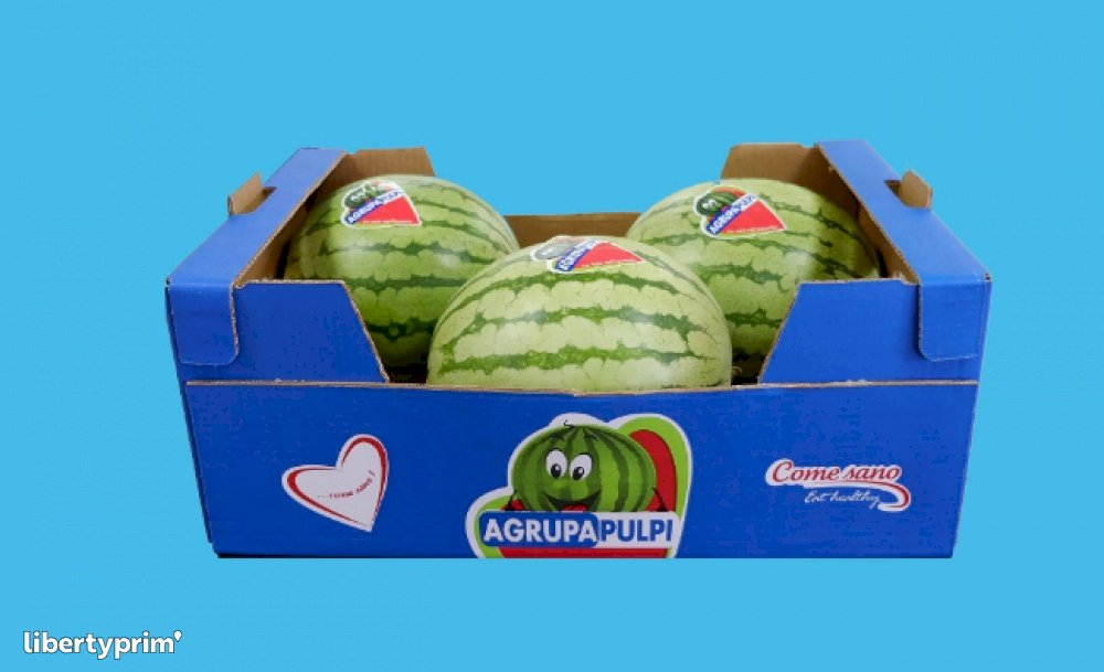 Watermelon Seedless Spain Conventional Grower - AGRUPAPULPI | Libertyprim