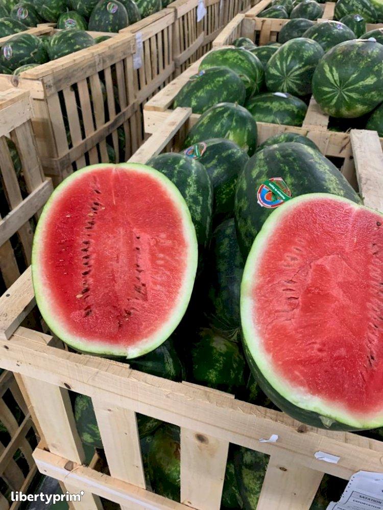 Watermelon Zagora Extra Morocco Conventional Grower - Fontestad   Libertyprim