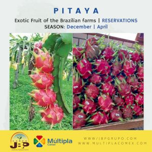 Pitahaya Red