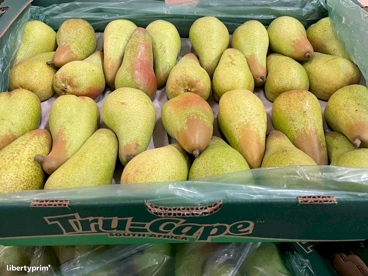 Pear Abate Fetel Class 1 South Africa Importer - INDIANA IMPORT | Libertyprim