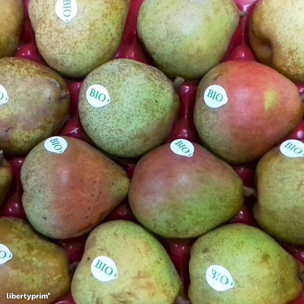 Pear Doyenne De Comice France Conventional Grower - THOMAS-LE-PRINCE | Libertyprim