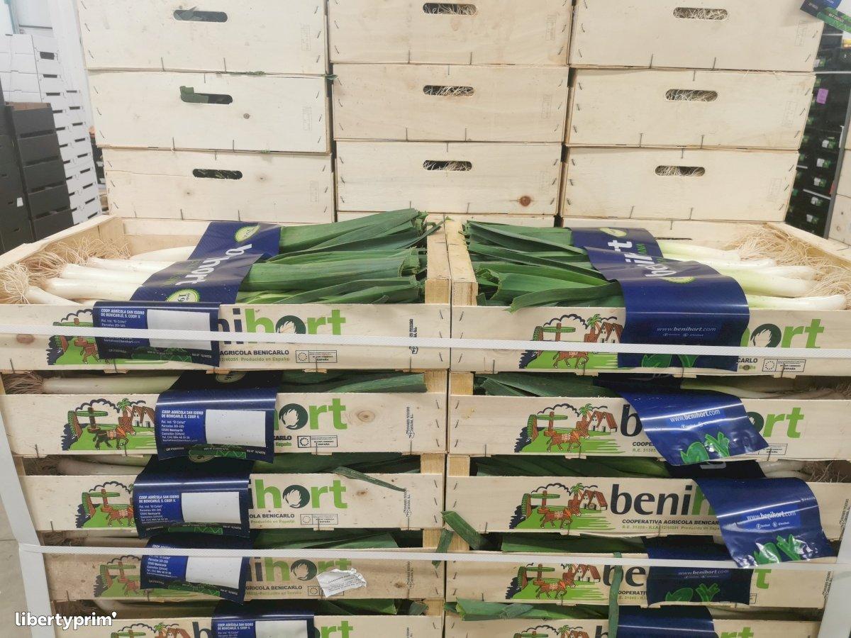 Poireau Catégorie 1 Espagne Distributeur - guillem66 | Libertyprim