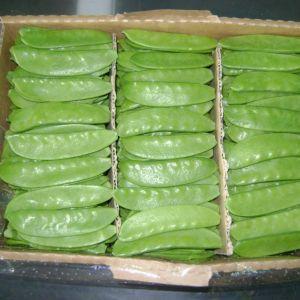 Peas Gourmand