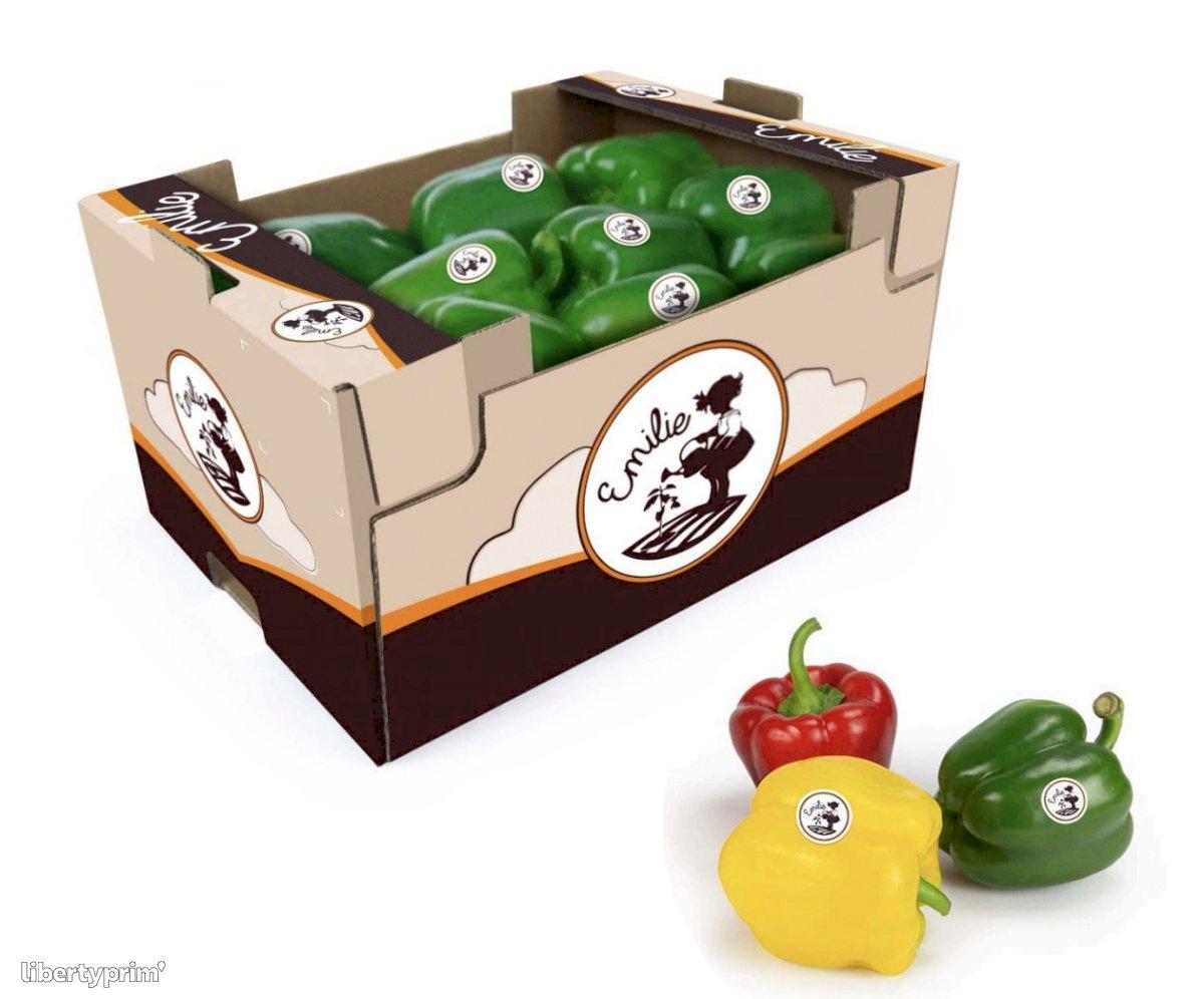 Pepper Green Class 1 France Distributor - sorianojustine66 | Libertyprim