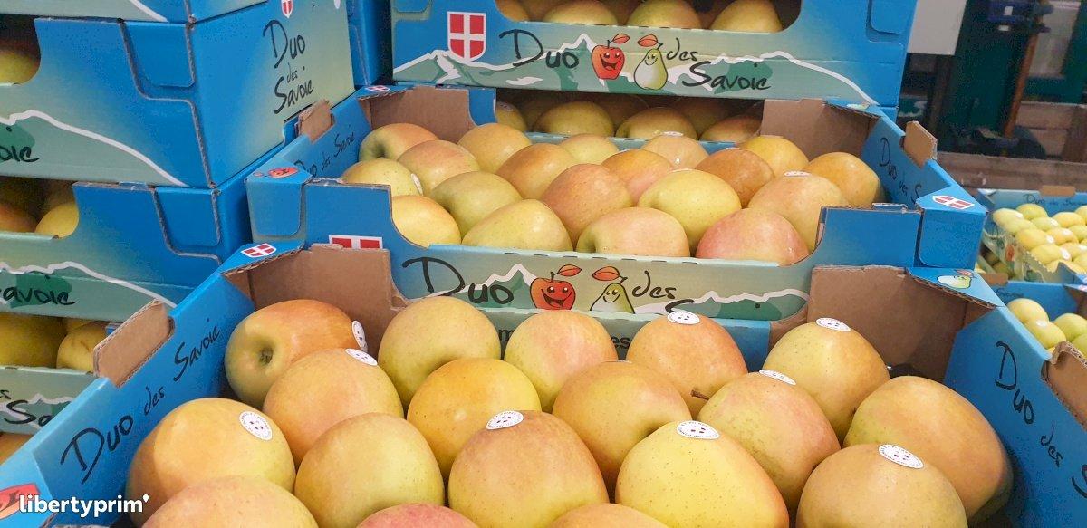 Pomme Catégorie 1 France Producteur Conventionnel - VERGERS-CHATEAUNEUF | Libertyprim