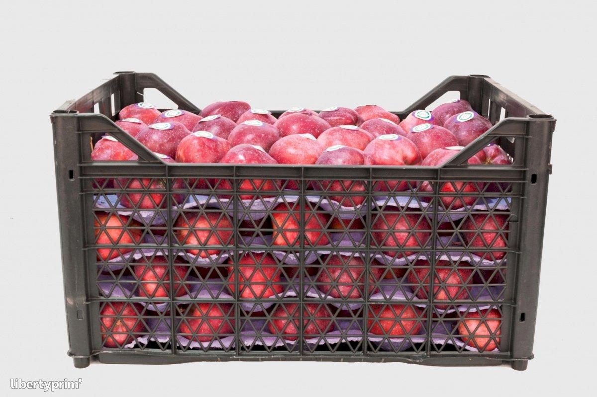 Pomme Red Chief Catégorie 1 Turquie Exportateur - Eren | Libertyprim