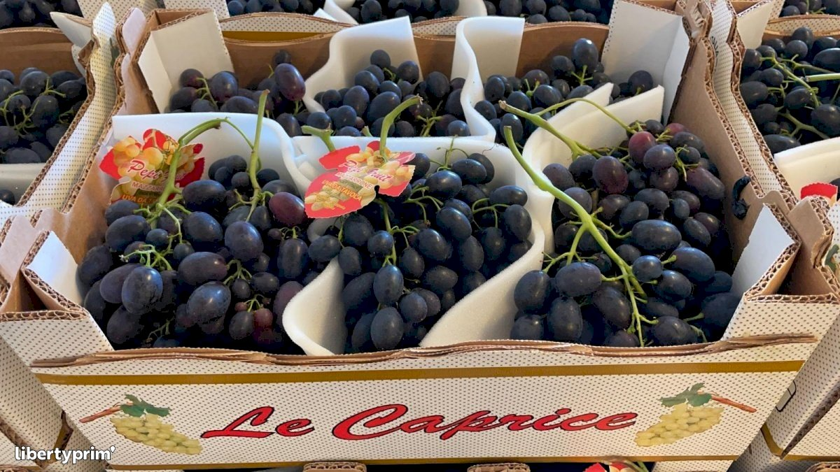 Grapes Black Magic Extra Italy Conventional Grower - Peruzzo   Libertyprim