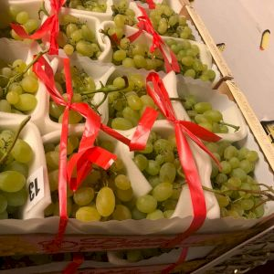 Grapes Vittoria