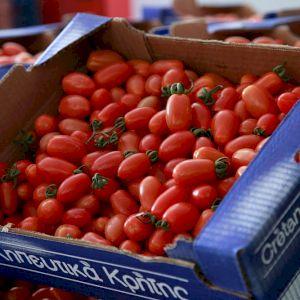 Tomato Long Cherry