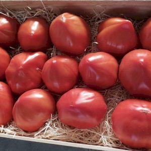 Tomato Heirloom Heart