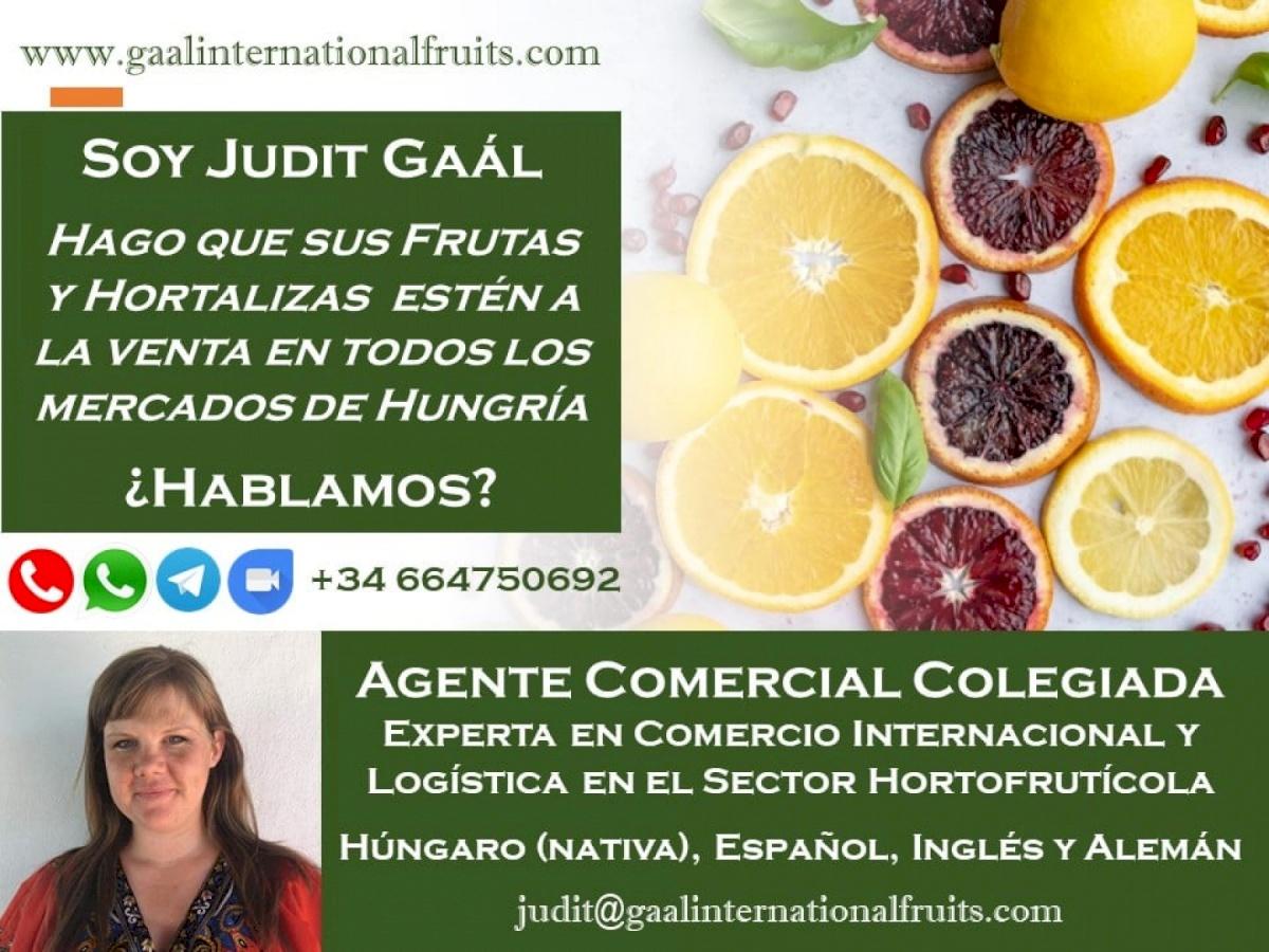 Gaal International Fruits