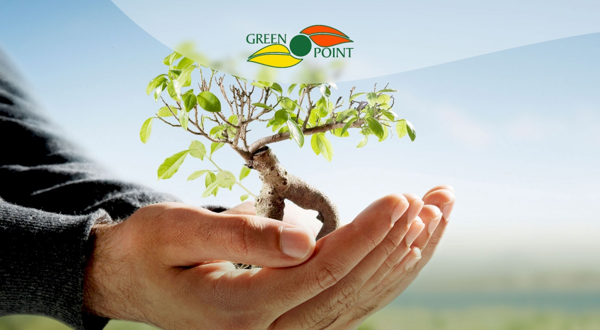 GREEN POINT FERTILIZERS