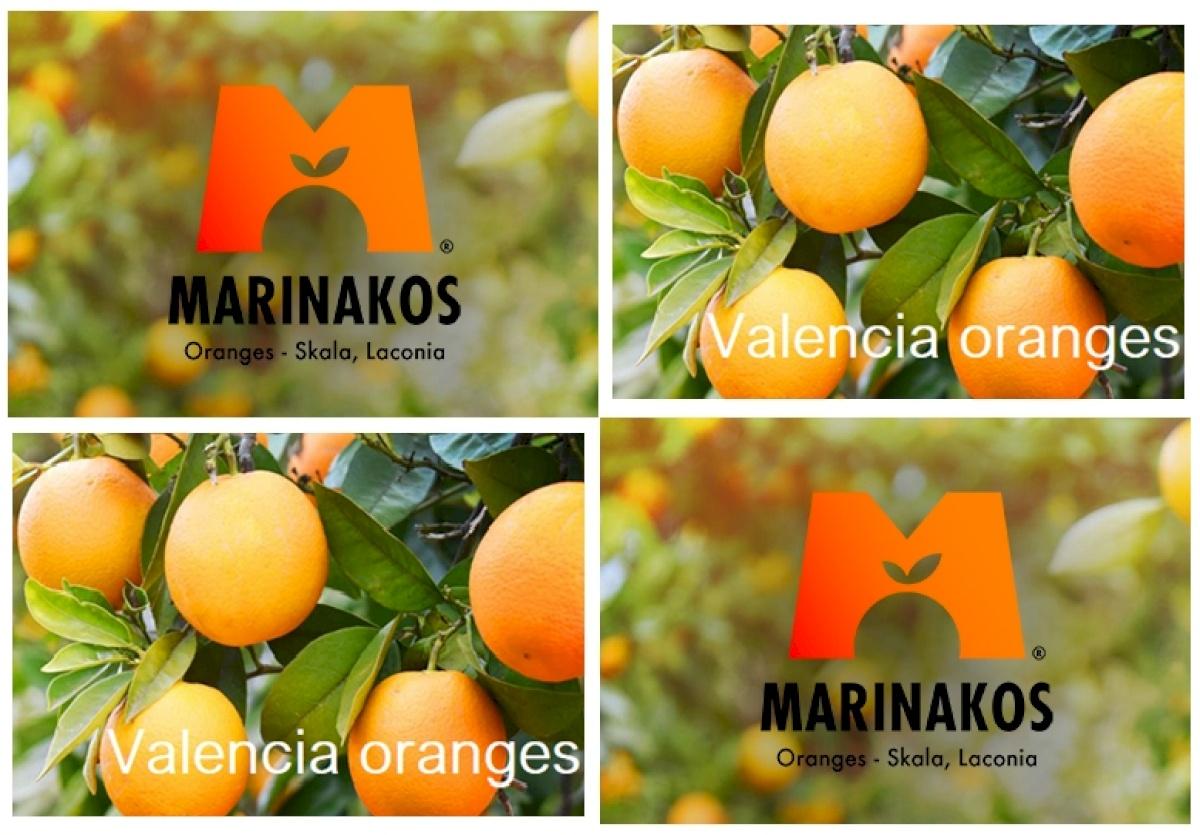 MARINAKOS ORANGES FROM SKALA