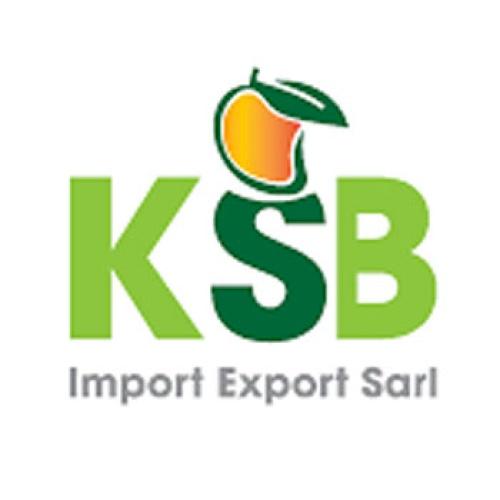 KSB IMPORT EXPORT SARL
