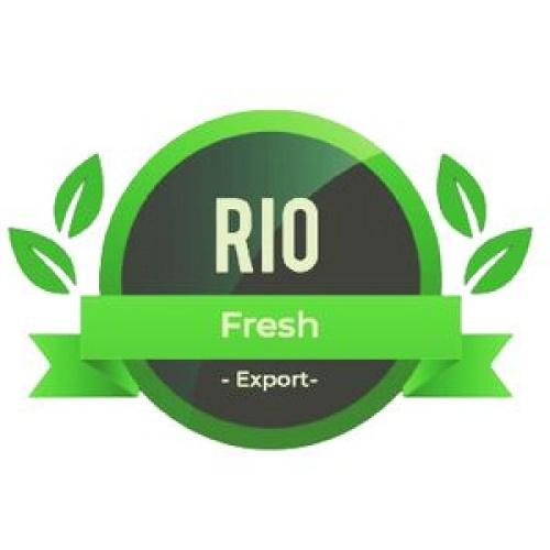 Rio Export