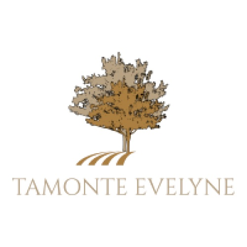 TAMONTE EVELYNE FRANCOISE