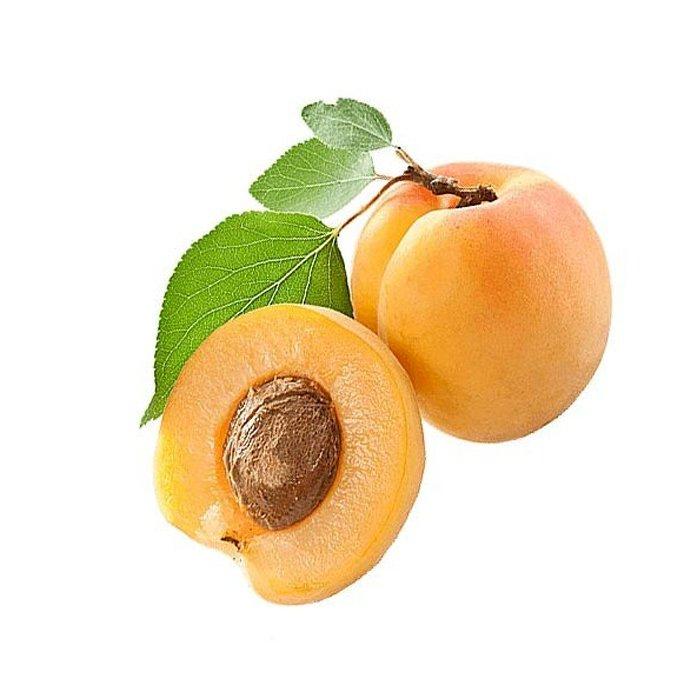 Apricot Bergeron