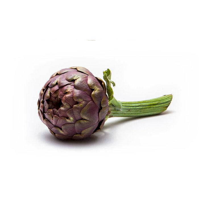 Artichoke Apollo