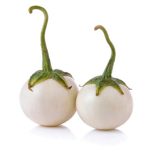 Eggplant Garden Egg