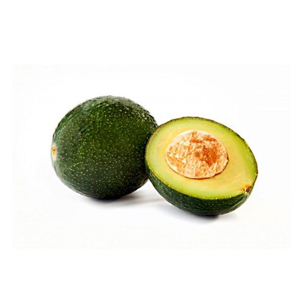 Avocado Reed