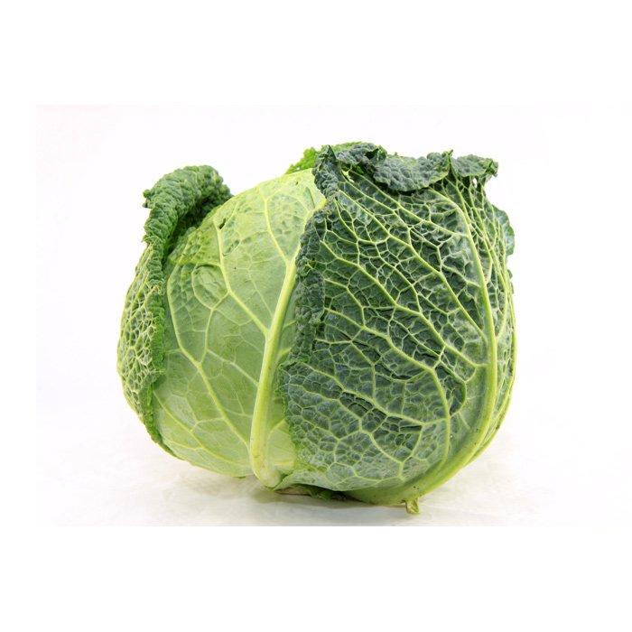 Cabbage Cabus