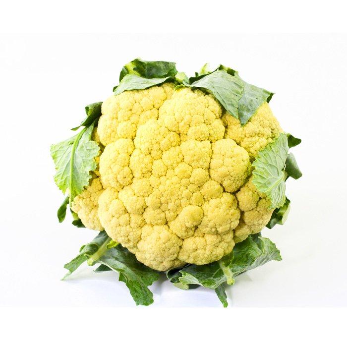 Cabbage Yellow Cauliflower