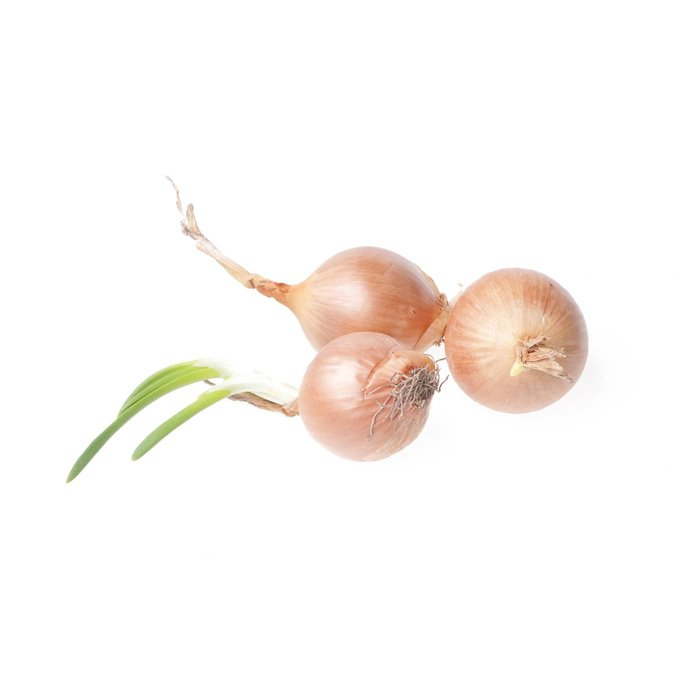 Onion Grelot