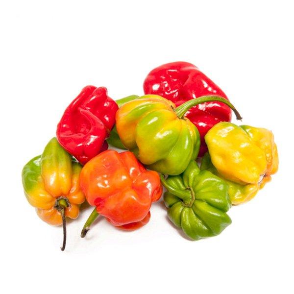 Chile Pepper Caribbean