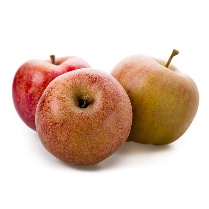 Apple Red Boskoop