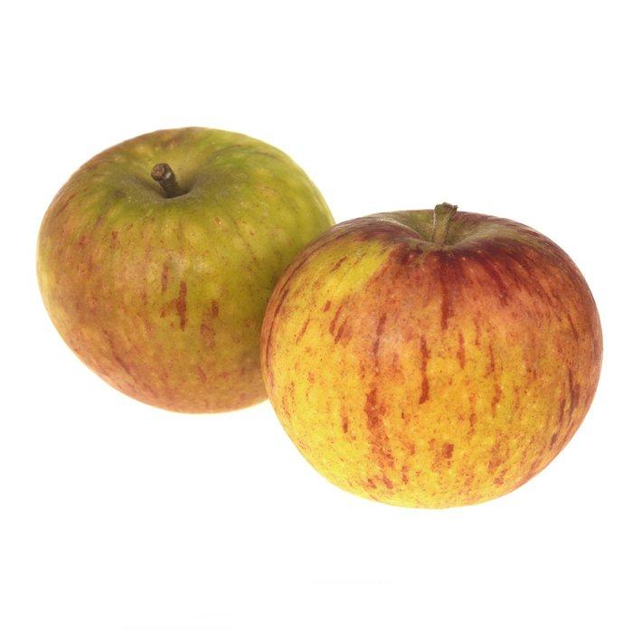Apple Cox's