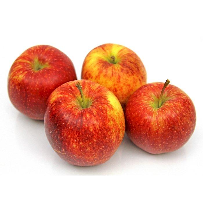 Apple Jonagored