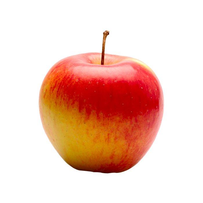 Apple Pinova